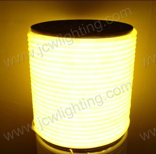 china factory 320° SMD2835 led neon rope light